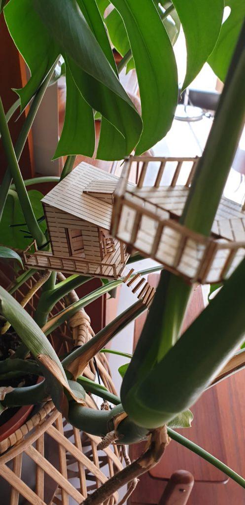 Amazing planthouse: Planthut en kraaiennest crowsnest