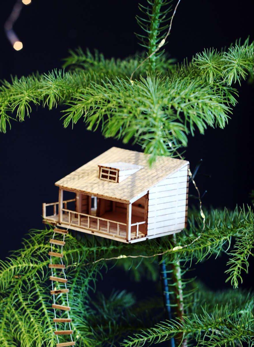 Amazing-planthouse-planthut-in-kamerden