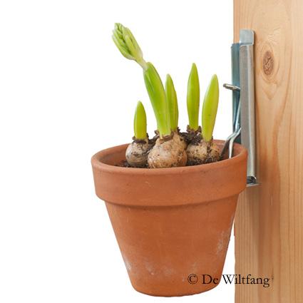 Bloempothanger hangende tuin groene muur