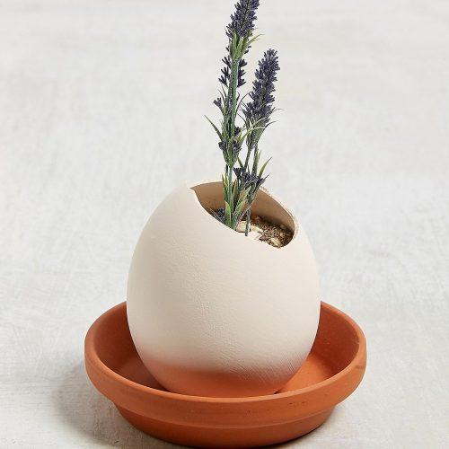 Eggling keramieken ei met zaad Lavendel