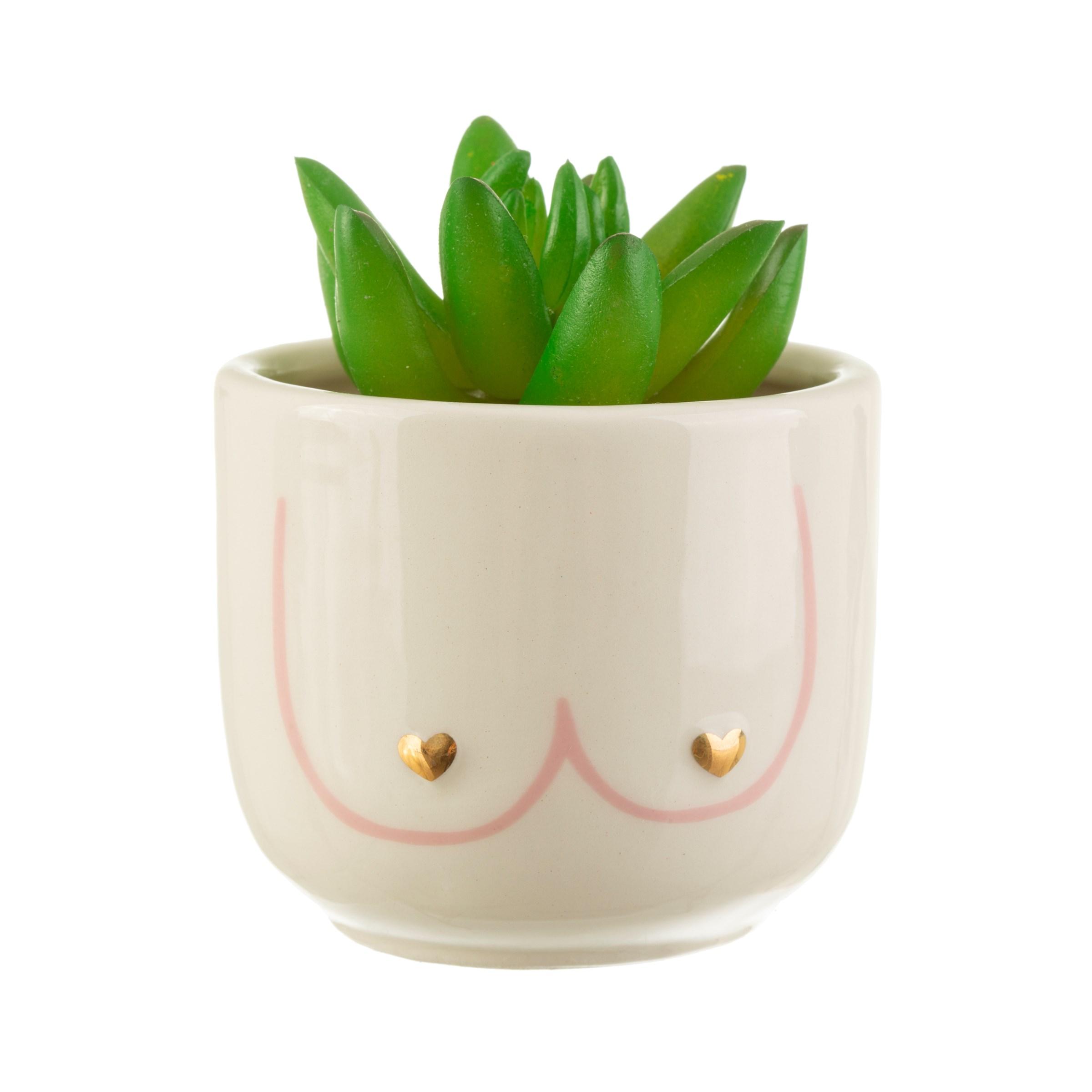Sass Belle mini planter bloempot Girl Power boobies