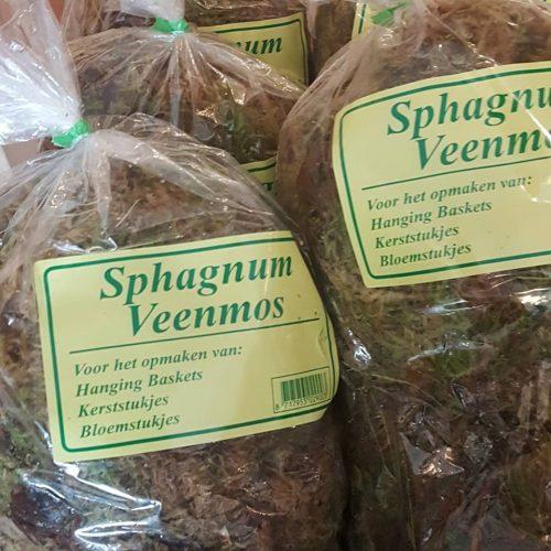 Sphagnum mos stekken Veenmos