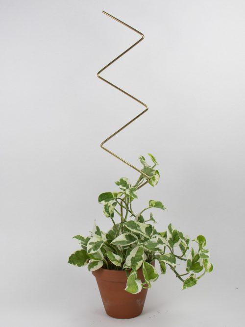 Botanopia plantenstandaard ondersteuning zigzag