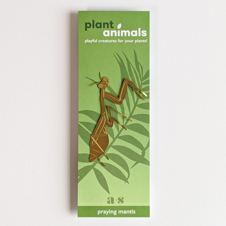 Another-studio-plant-bidsprinkhaan