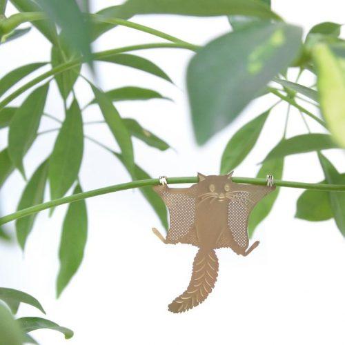 Another-studio-plant-animal-vliegende-eekhoorn-flying-squirrel