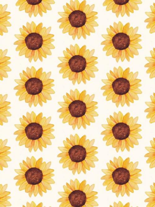 Studio-fritsy-kaart-zonnebloemen