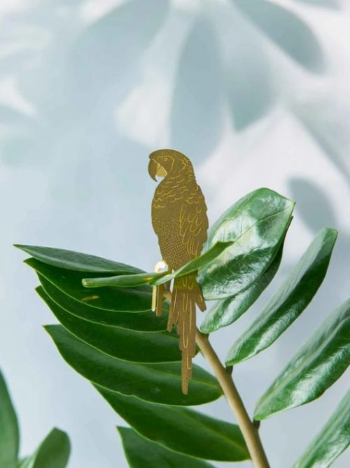Another-studio-Plant-animal-parrot-papegaai
