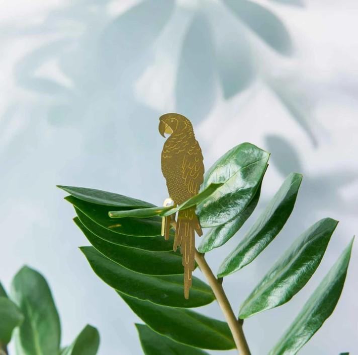 Another-studio-Plant-animal-parrot-papegaai