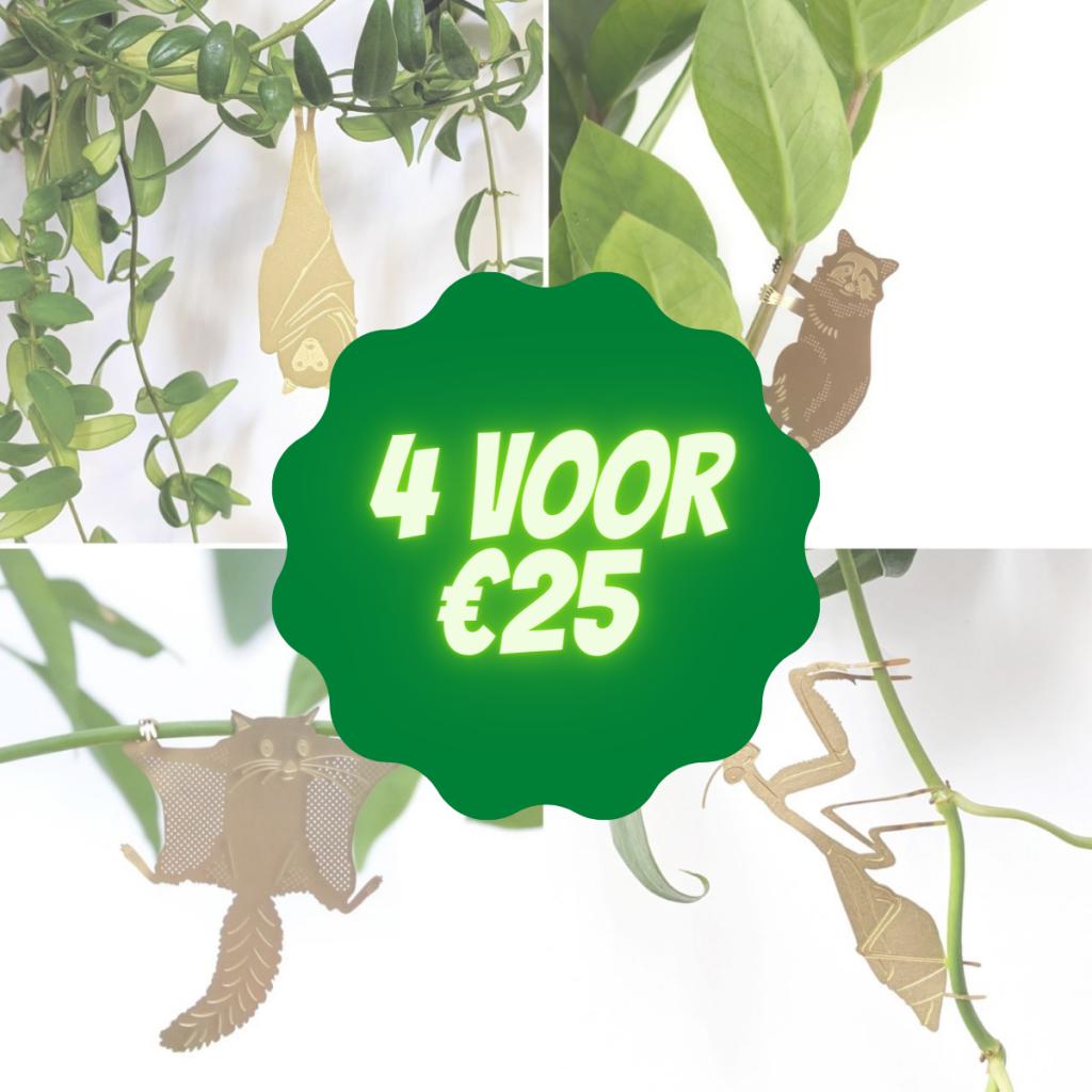 plant-animals-voordeel