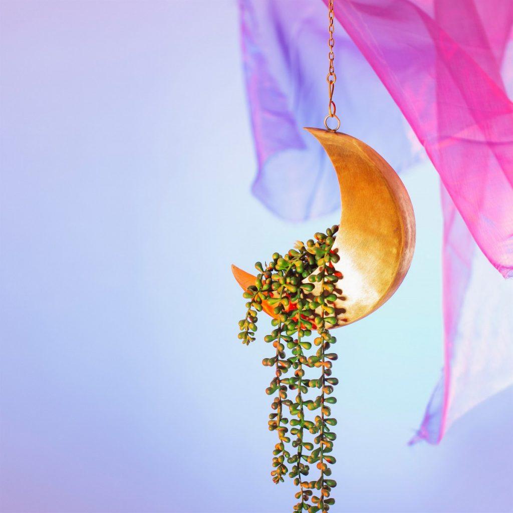 Plantenkamer-sass-belle-celestial-moon-hanging-planter_02