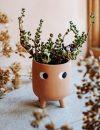 Plantenkamer-sass-belle-little-leggy-terracotta-planter