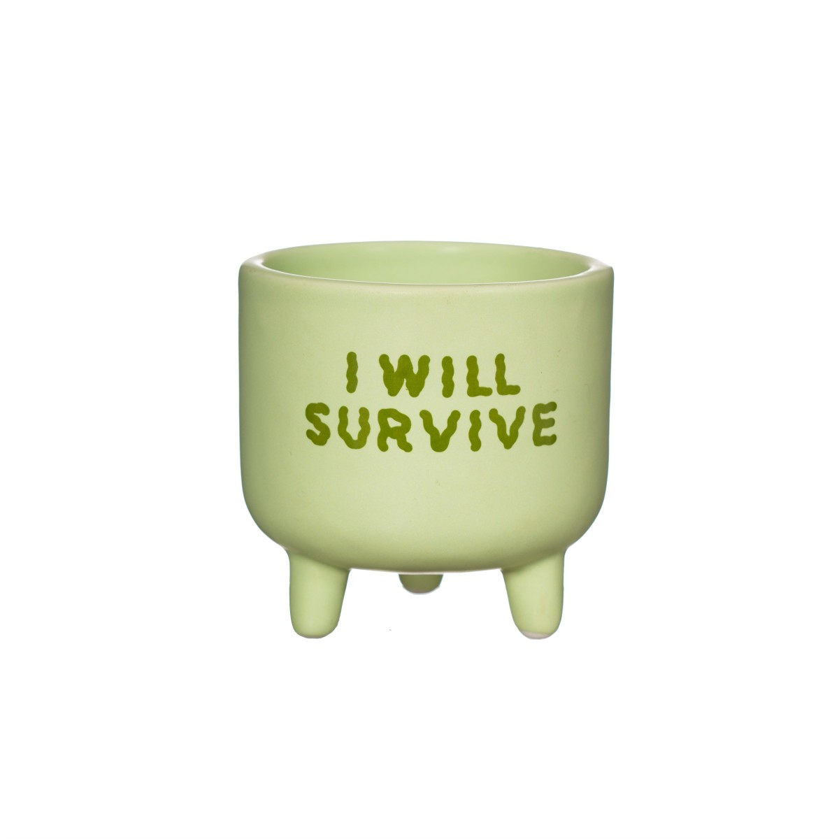 Sass-belle-bloempot-i-will-survive