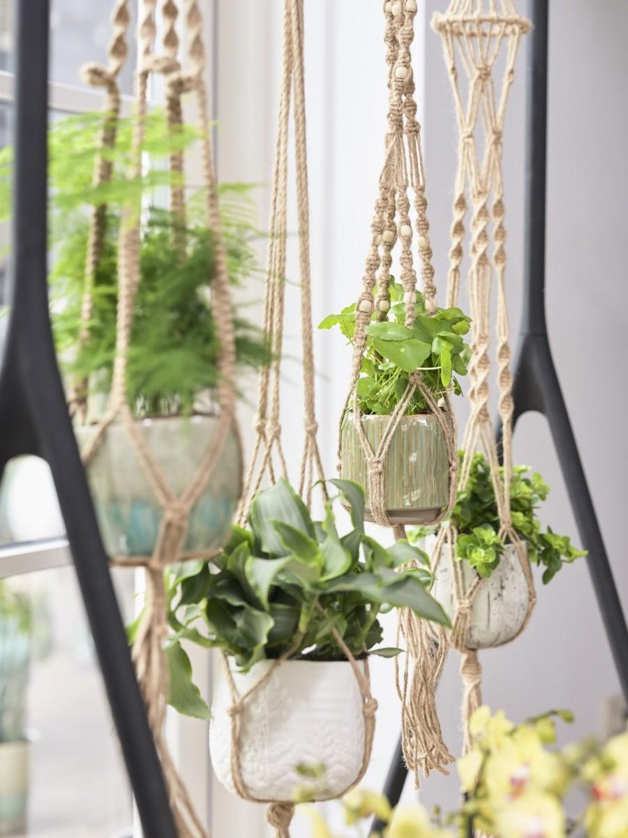 Plantenkamer-touwhanger-mica-ter-steege-macrame