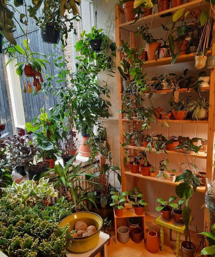 de-plantenkamer-interieur