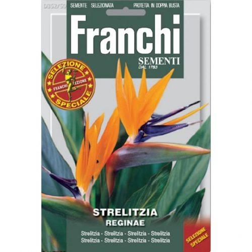 Strelitzia-zaden-reginae-paradijsvogelbloem