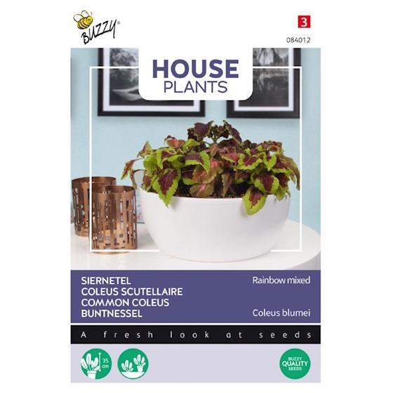Zaden-Buzz-seeds-coleus-siernetel