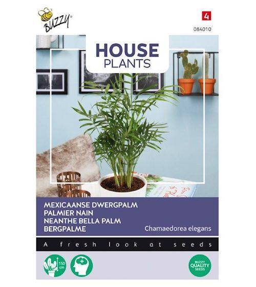 Plantenkamer-buzzy-seeds-Chamaedorea-zaden-dwergpalm