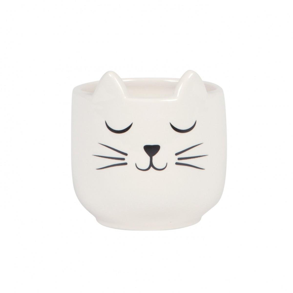 Plantenkamer-sass-belle-mini-cat-whiskers-bloempot