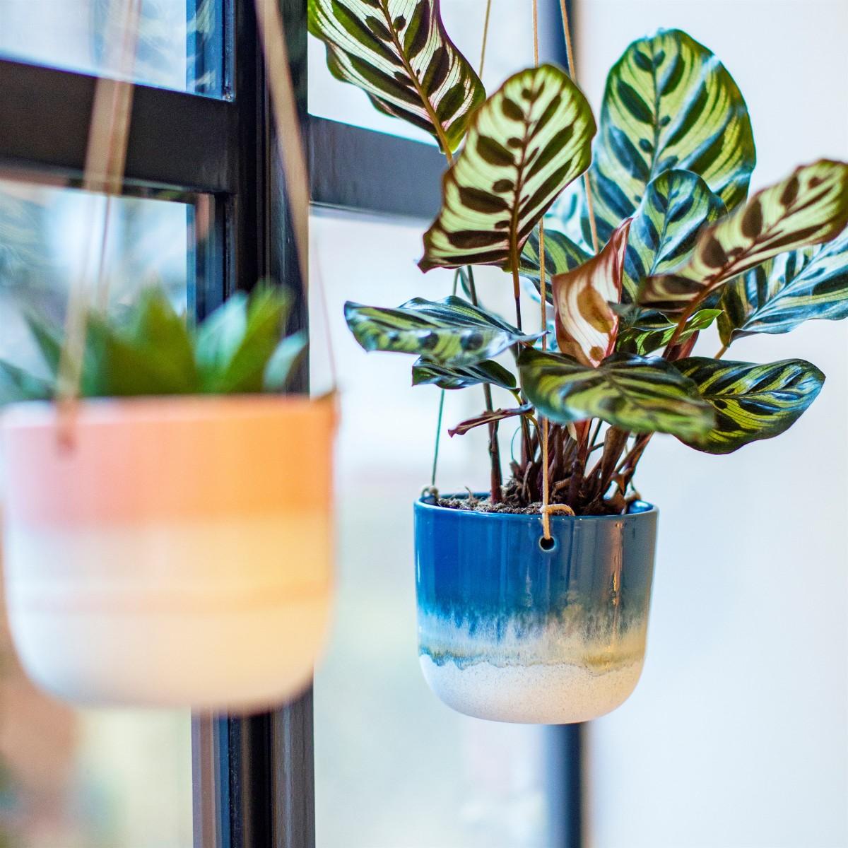 Plantenkamer-sass-belle-mojave-glaze-blue-hanging-planter