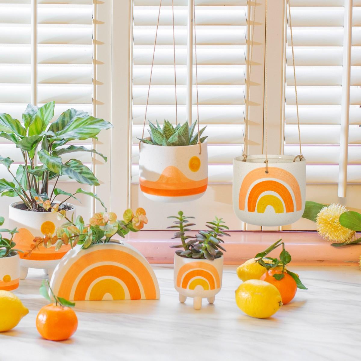 Plantenkamer-sass-belle-rainbow-hanging-planter