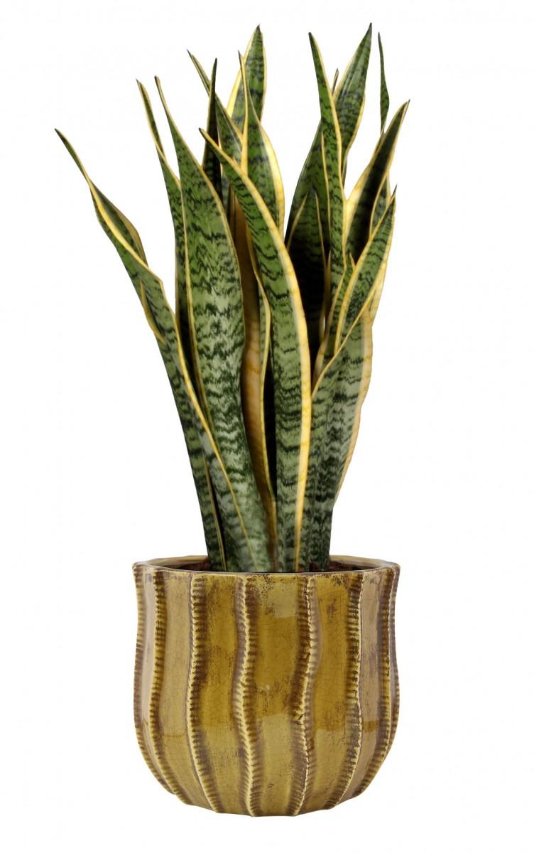 Plantenkamer-manon-oker-bloempot