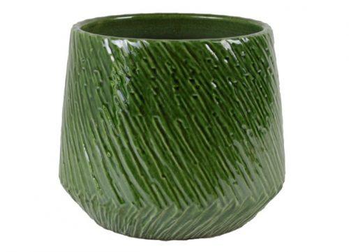 Plantenkamer-nento-groen