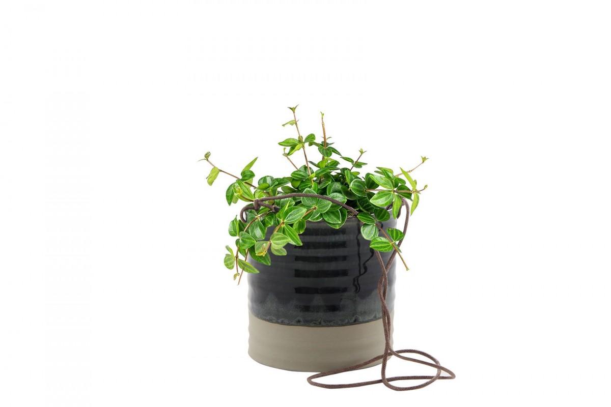 Plantenkamer-nik-blauw-hanger