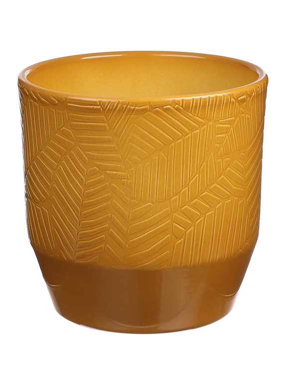 Plantenkamer-pisa-bloempot-curry-leaf-relief