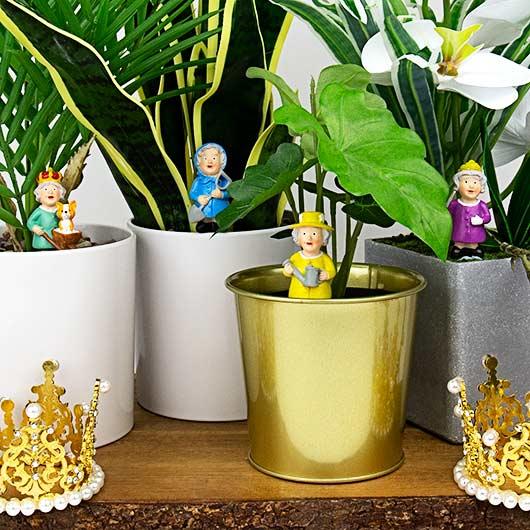 Plantenkamer-royals-planters-main_02.j