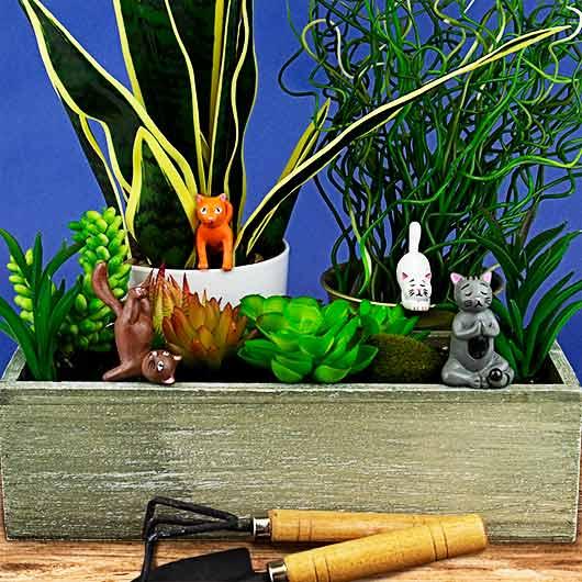 Plantenkamer-yoga-cats-planters-rollover