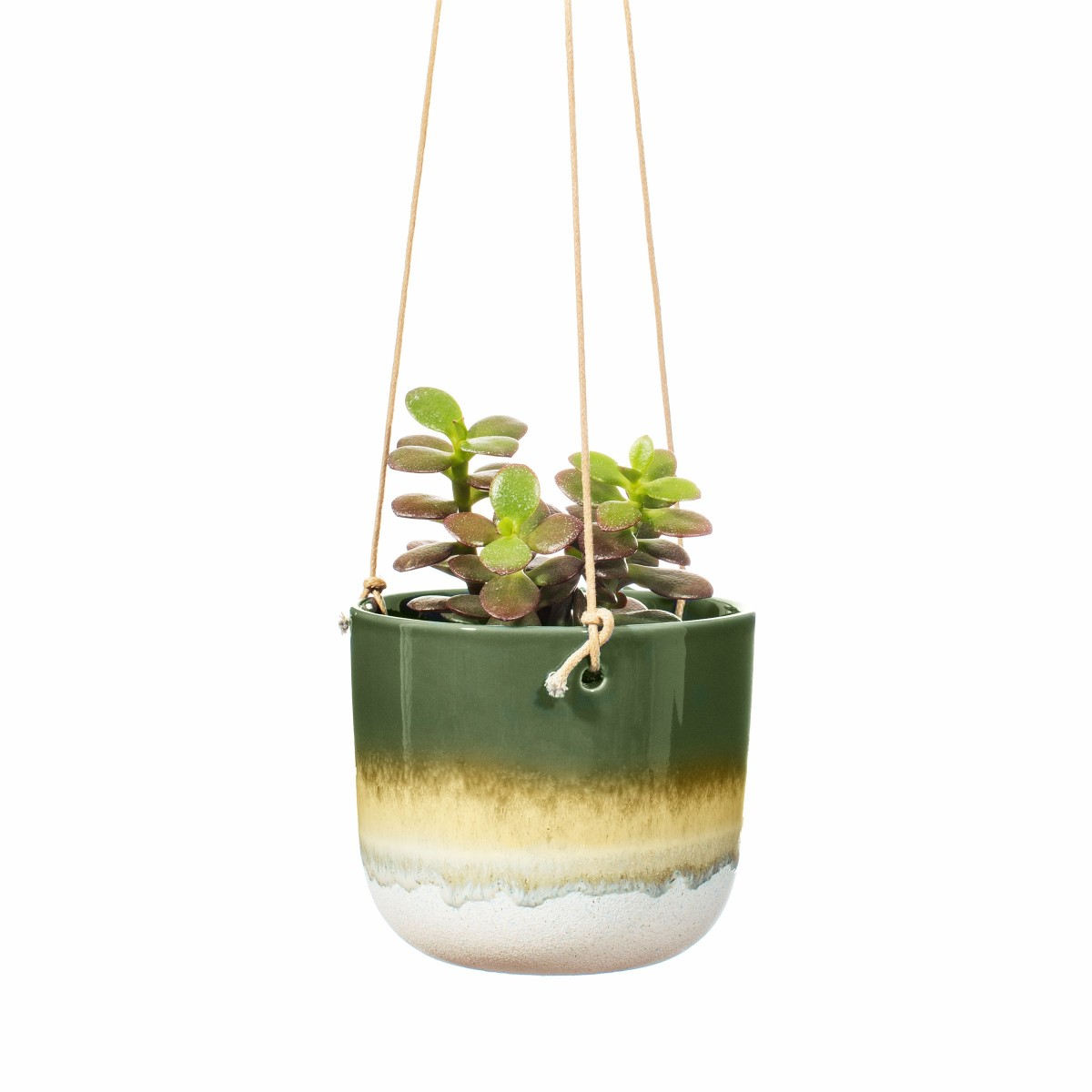 Plantenkamer-mojave-green-hanging-planter