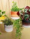 Plantenkamer_A_Mojave_Glaze_Brown_Hanging-pot