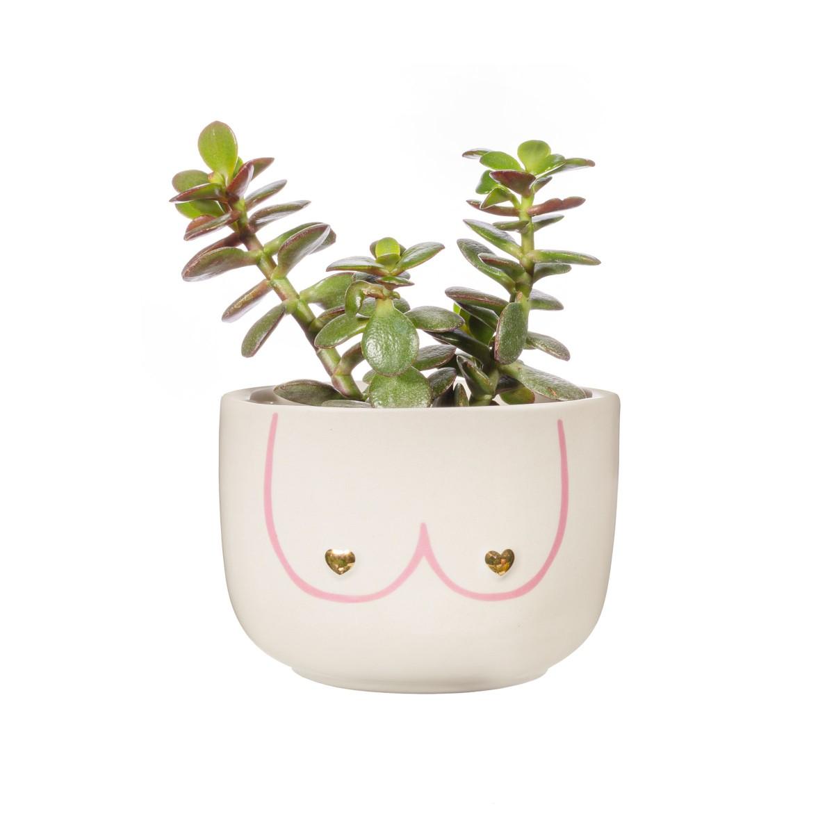 Plantenkamer-Sass-Belle-Mini-Girl-Power-Boobies-Planter