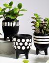 Plantenkamer-scandi-boho-little-bloempot-zwart