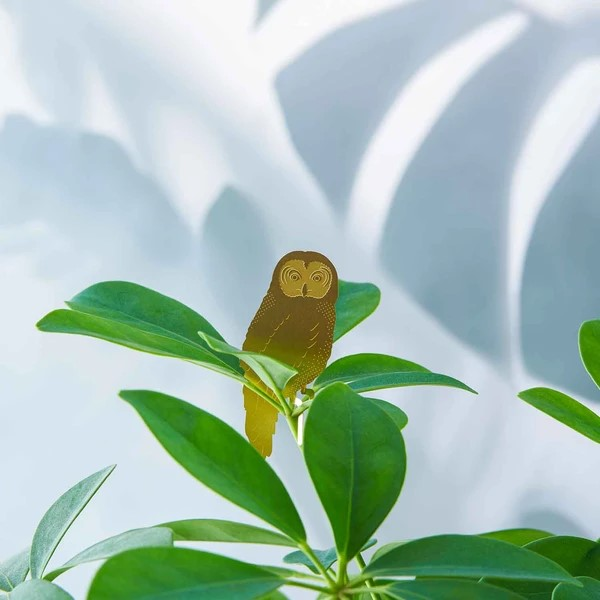 Another-studio-plant-animal-uil-owl