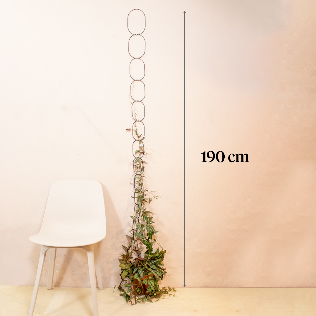 Black-chain-support-for-climbing-plants