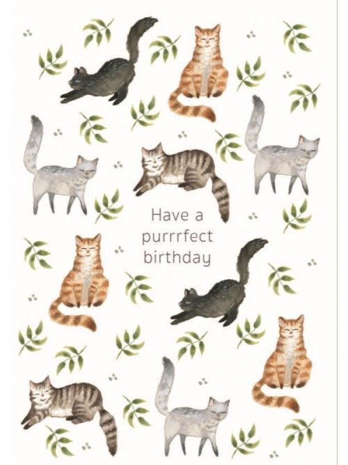 Plantenkamer-purrfect-birthday